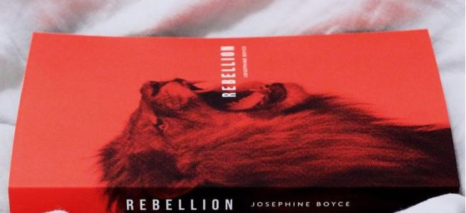 Rebellion Cover self-publishing